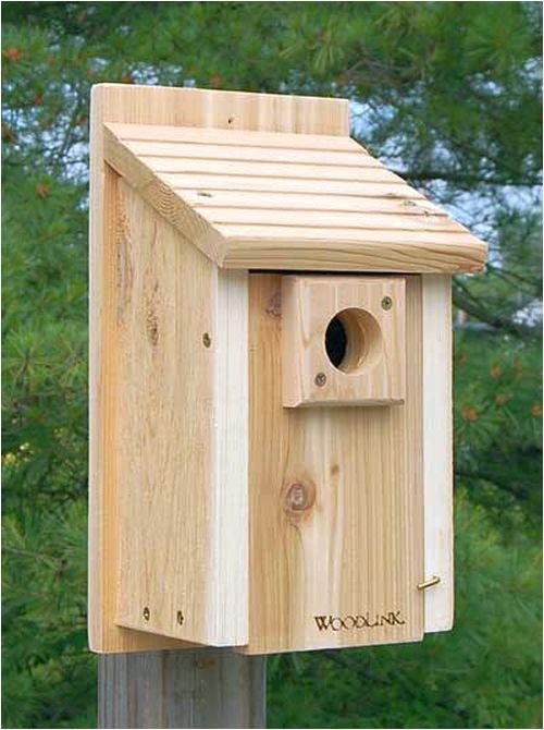 audubon bird house plans