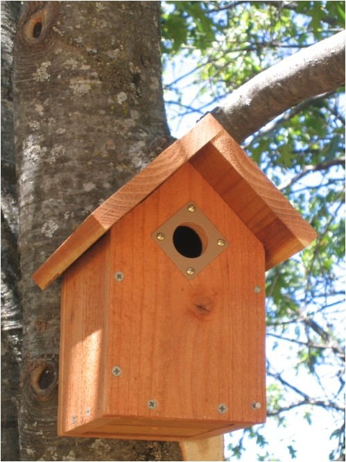 audubon society bird house plans