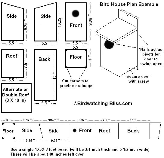 Bird House Plans for Sparrows Bird House Plans Sparrow How to Making Woodwork Pdf