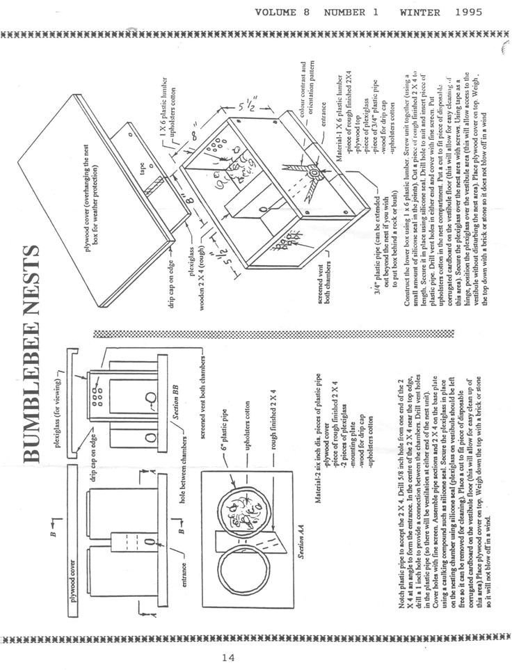 Bumble Bee House Plans Bumble Bee Bombus Nest Box Plan Nature Hymenopteres