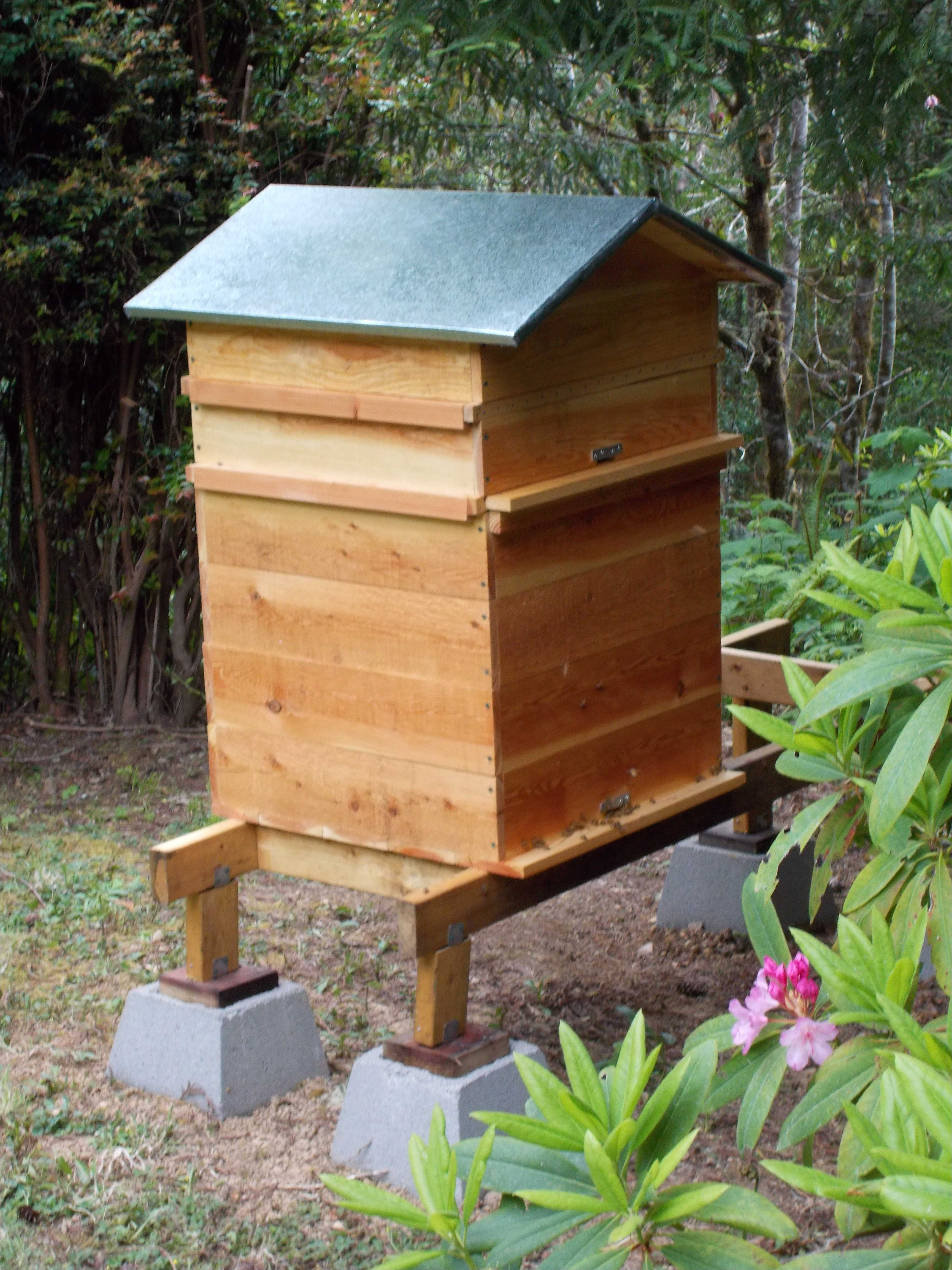 bee house plans