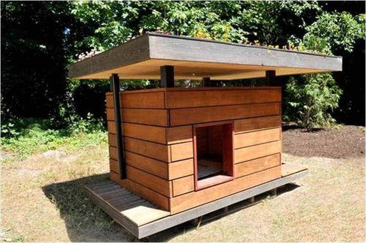 wooden pallet dog house plans