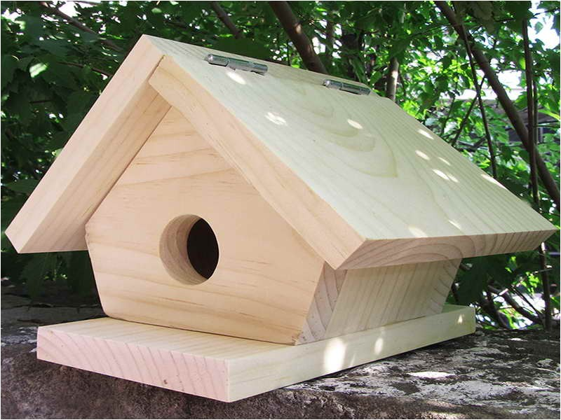 Cool Bird House Plans 11 Cool Bird House Plans Ideas World Homes 3697
