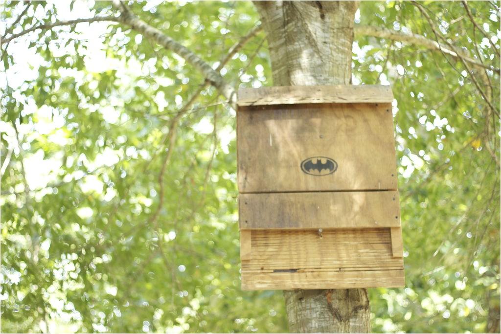 free bat house plans do it yourself plans diy free download speaker cabinets plans