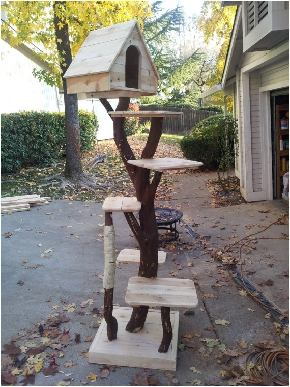 Diy Cat Tree House Plans Awesome Cat Tree Picmia