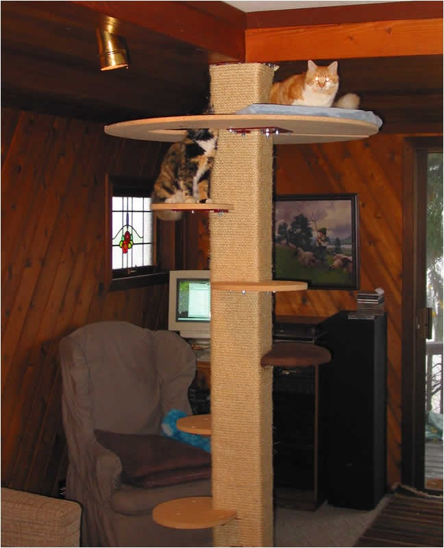 nzljngu0 how to make a cat tree