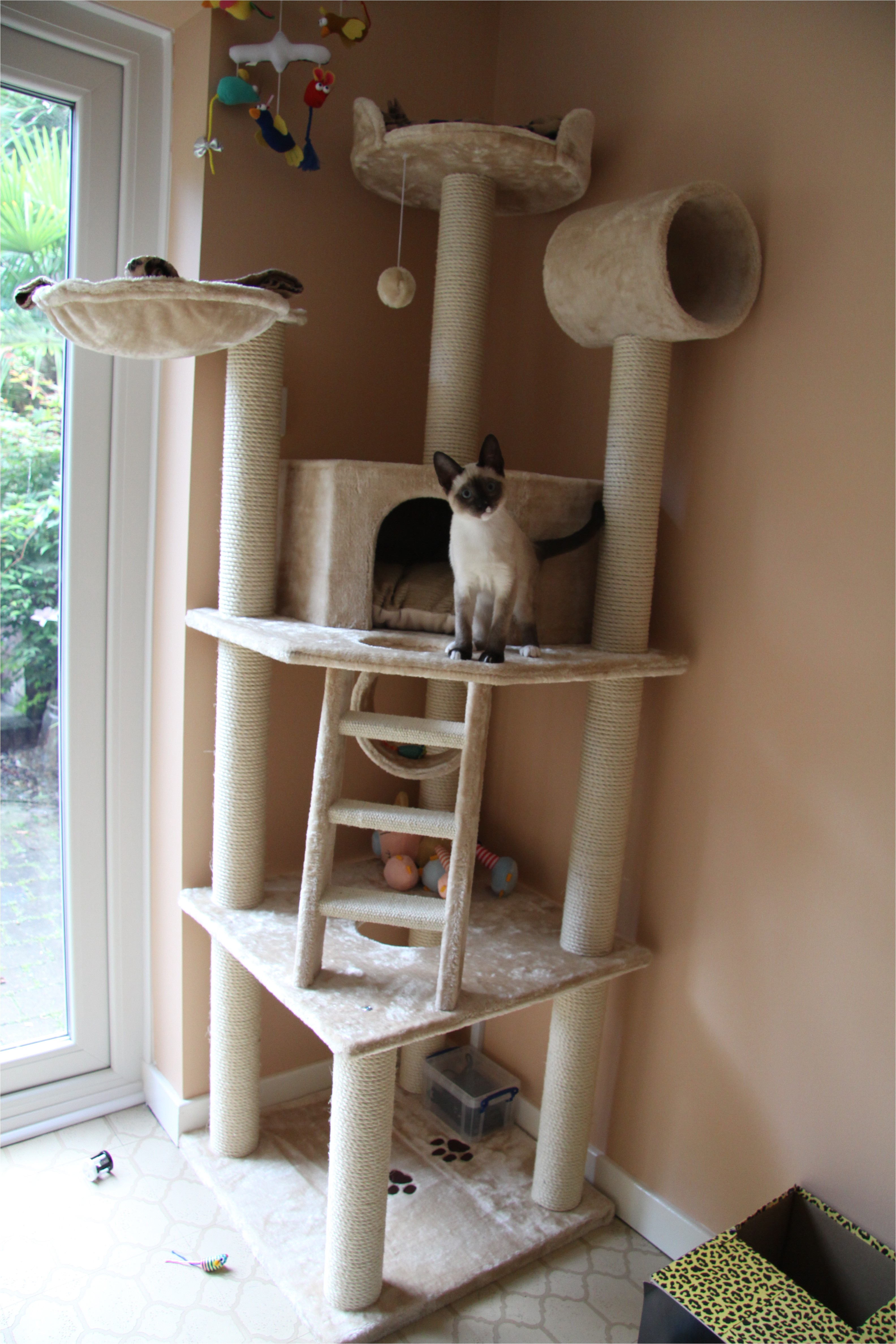 pdf diy cat tower plans download cedar log swing plans