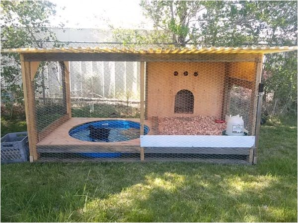 Diy Duck House Plans 37 Free Diy Duck House Coop Plans Ideas that You Can