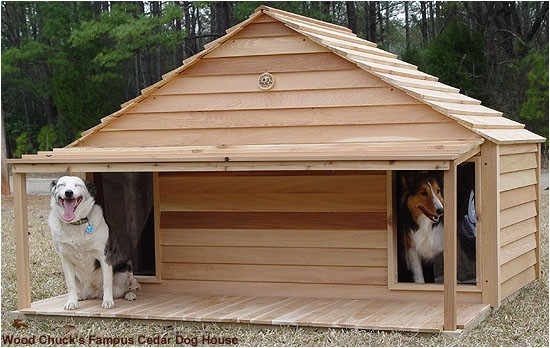 Dog House Plans for 3 Dogs Diy Dog Houses Dog House Plans Aussiedoodle and