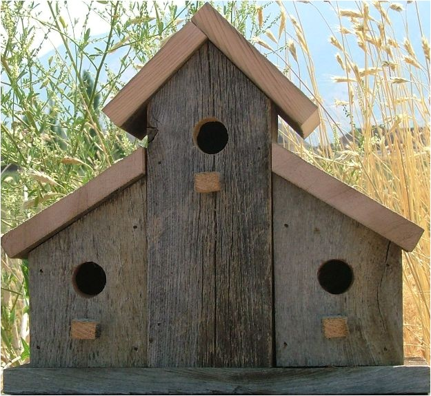 barn birdhouse pictures