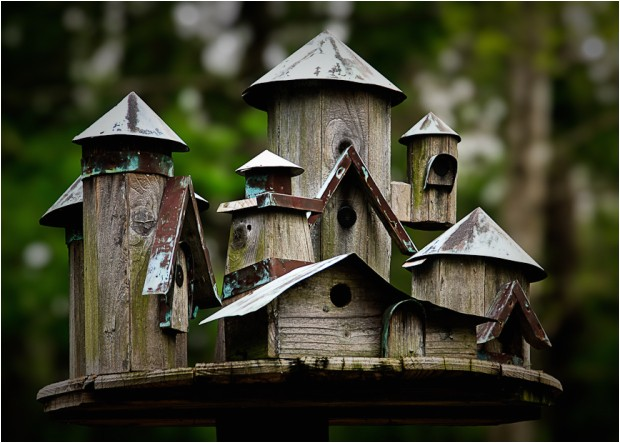 diy decorative bird house plans wooden pdf bench seat storage box plans
