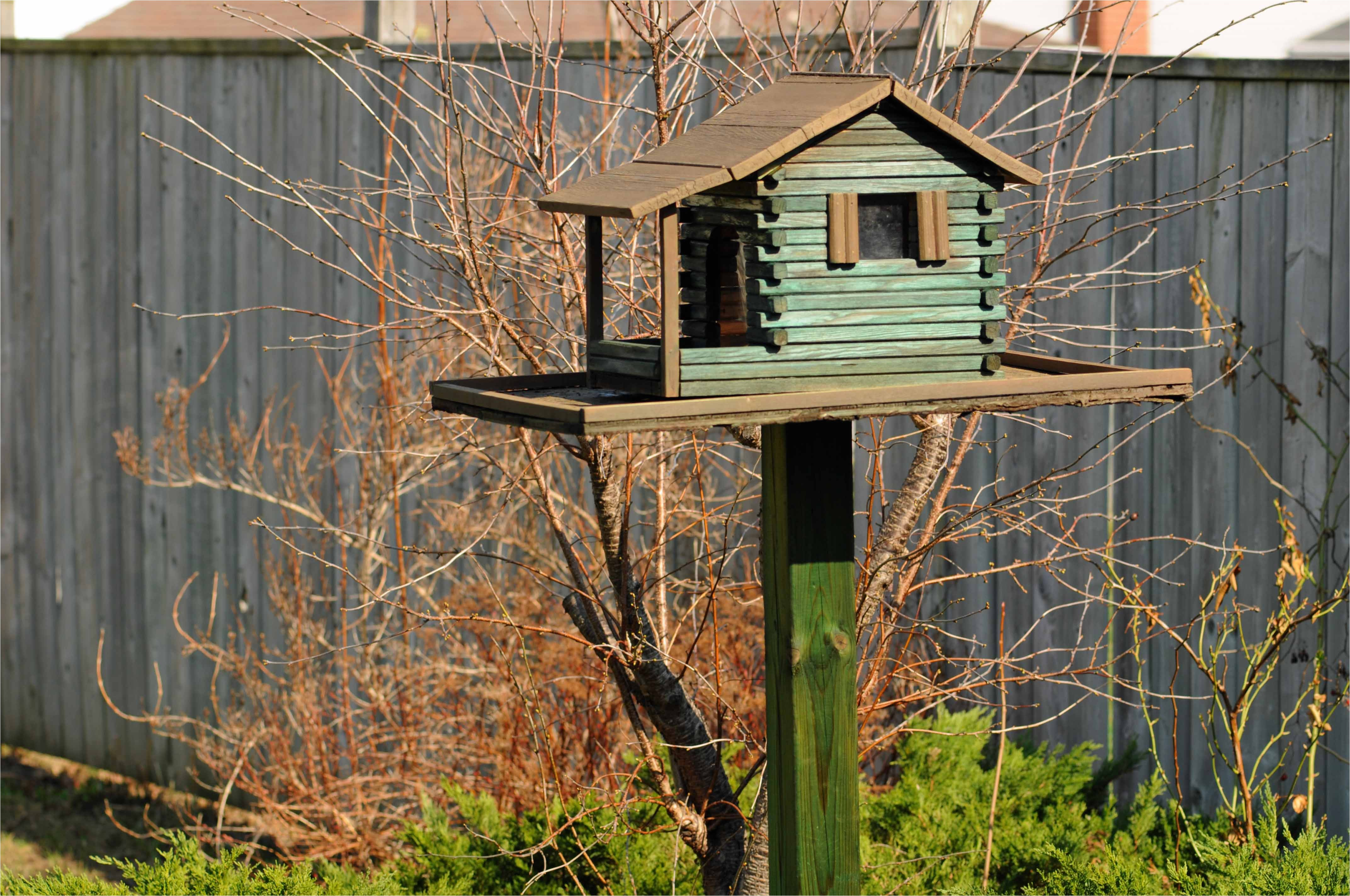 pdf diy elaborate bird house plans download easy wood projects boys