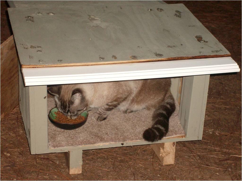 feral cat house plans