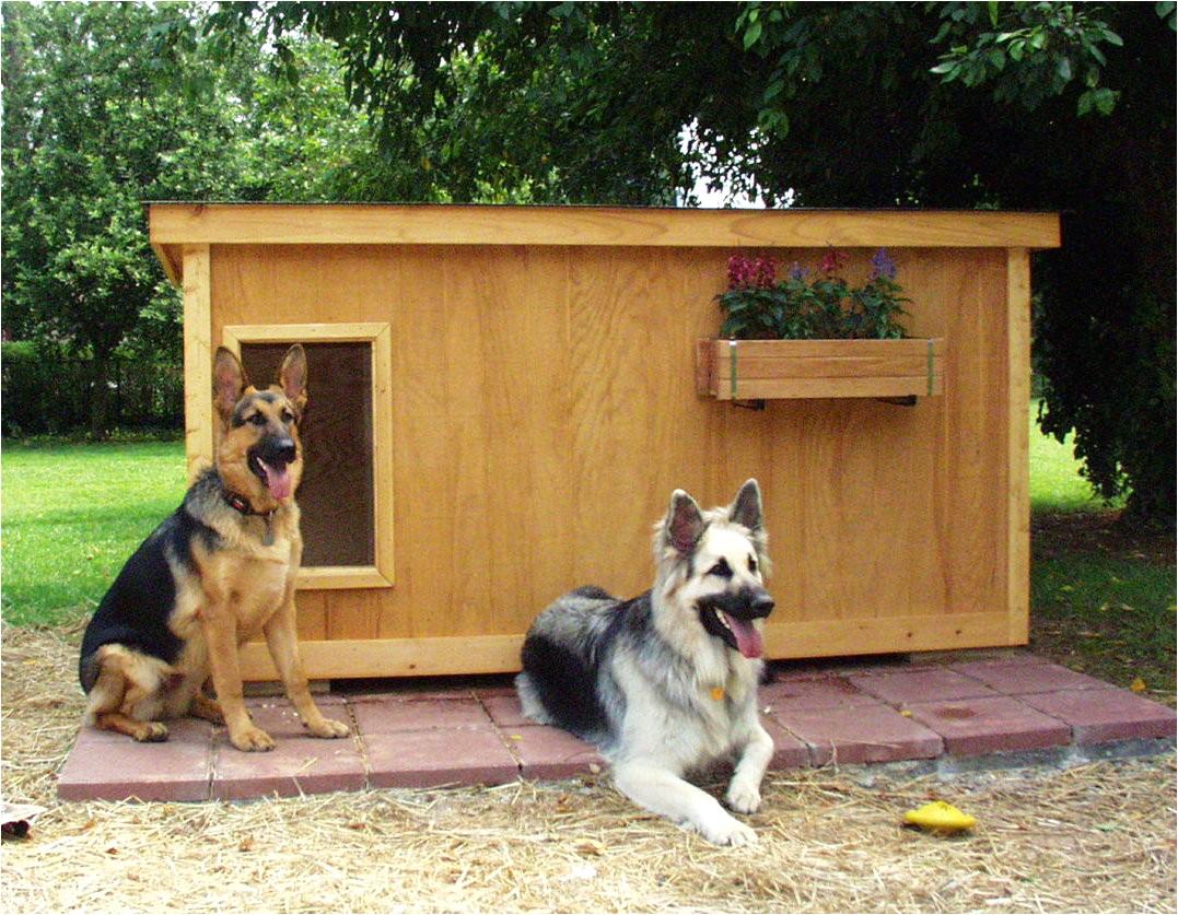 dog houses and dog house plans