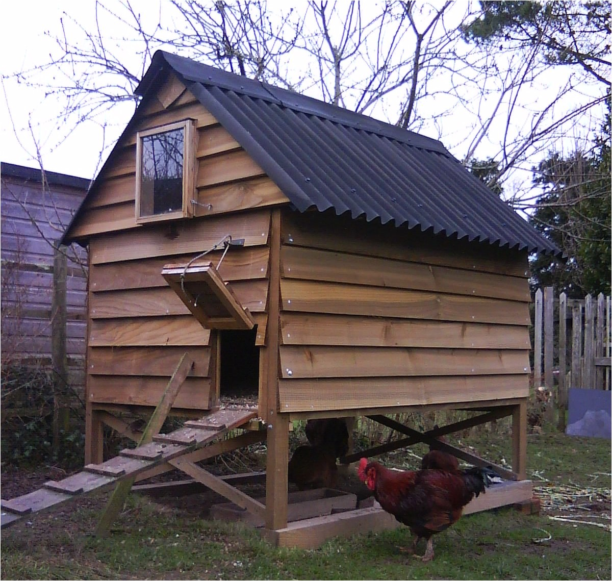 Hen Houses Plans Backyard Hen House Plans Outdoor Furniture Design and Ideas