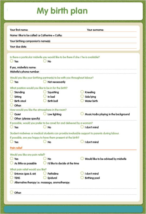 Home Birth Plan 22 Sample Birth Plan Templates Pdf Word Apple Pages