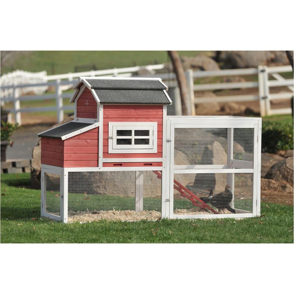 home depot chicken coop plan striking