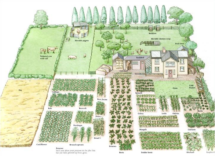 Home Garden Plan Enjoy This Beautiful Day Garden Planning