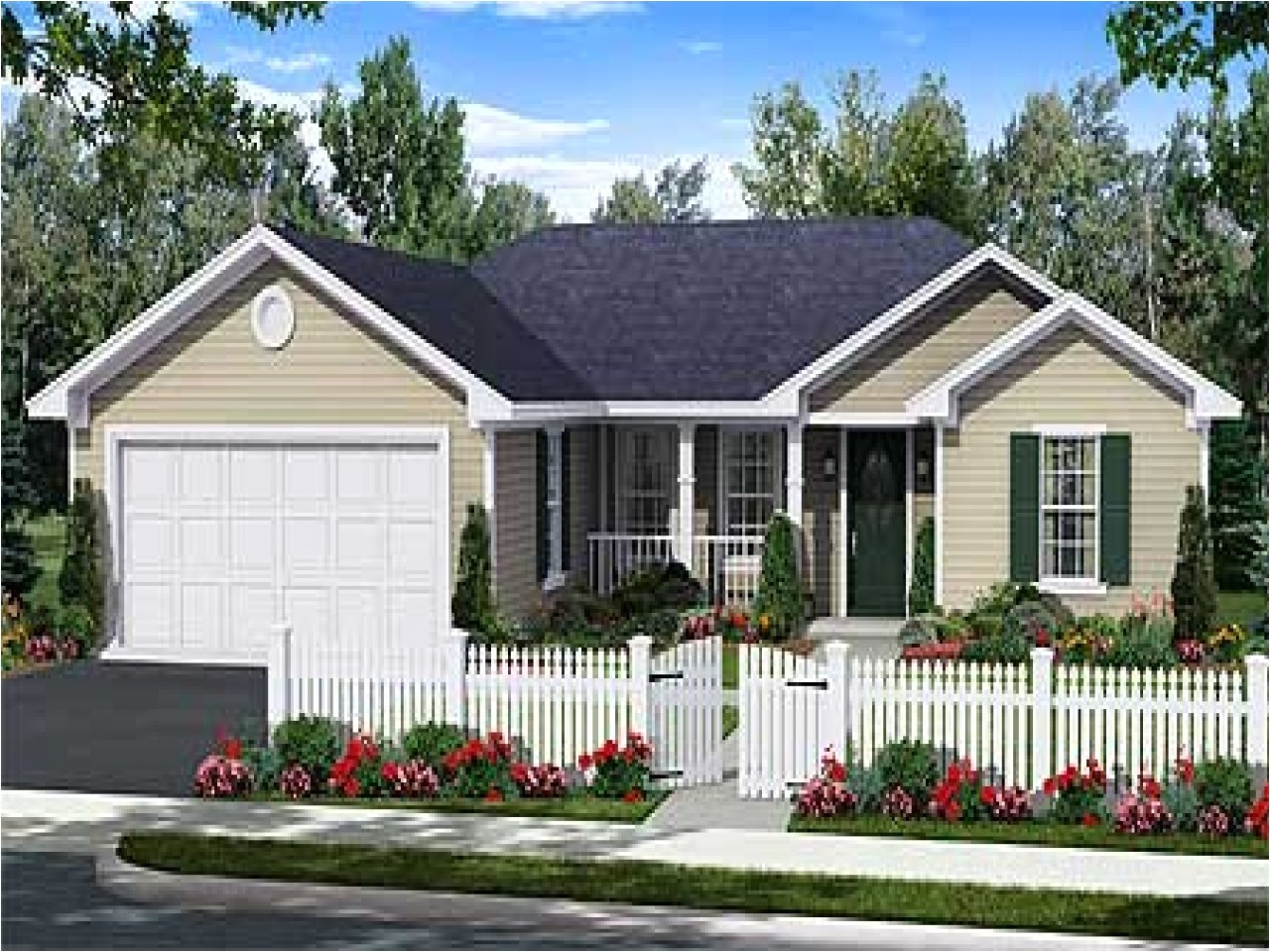 1 story house plans with pictures