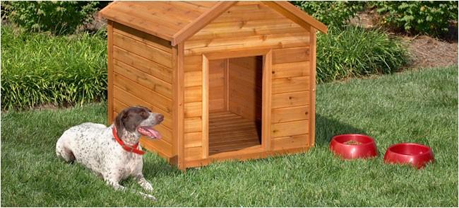 awesome dog house diy ideas
