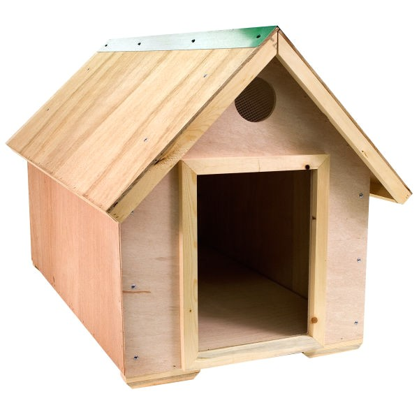 dogs house design minimalist pictures
