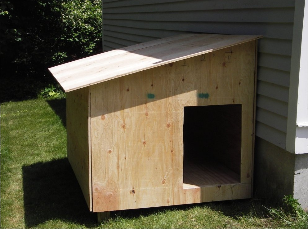 how to make your own dog house