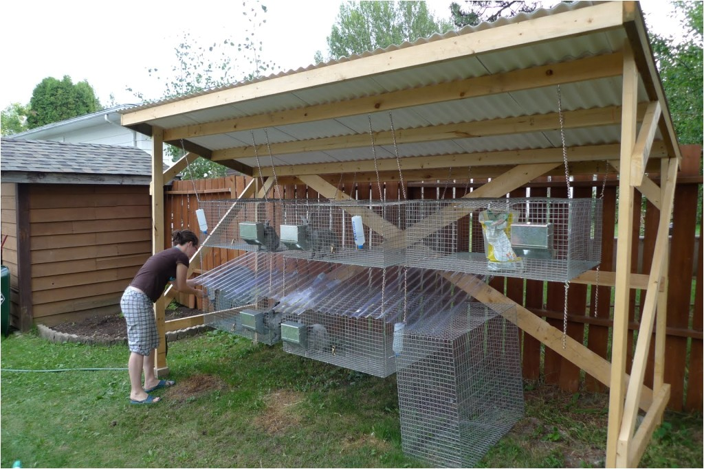 10 diy rabbit hutch building designs and plans