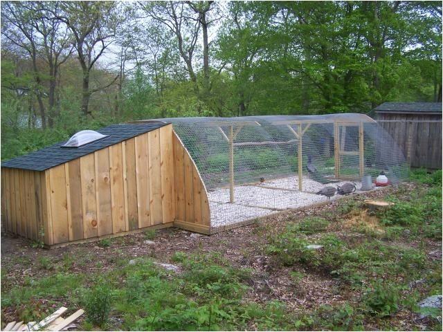 peafowl housing ideas