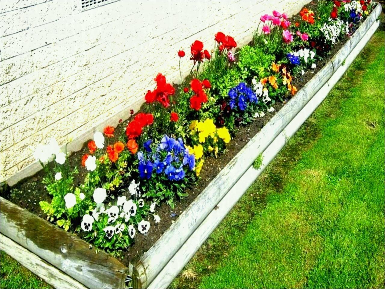 flower garden ideas in front of house perennial pinterest full sun