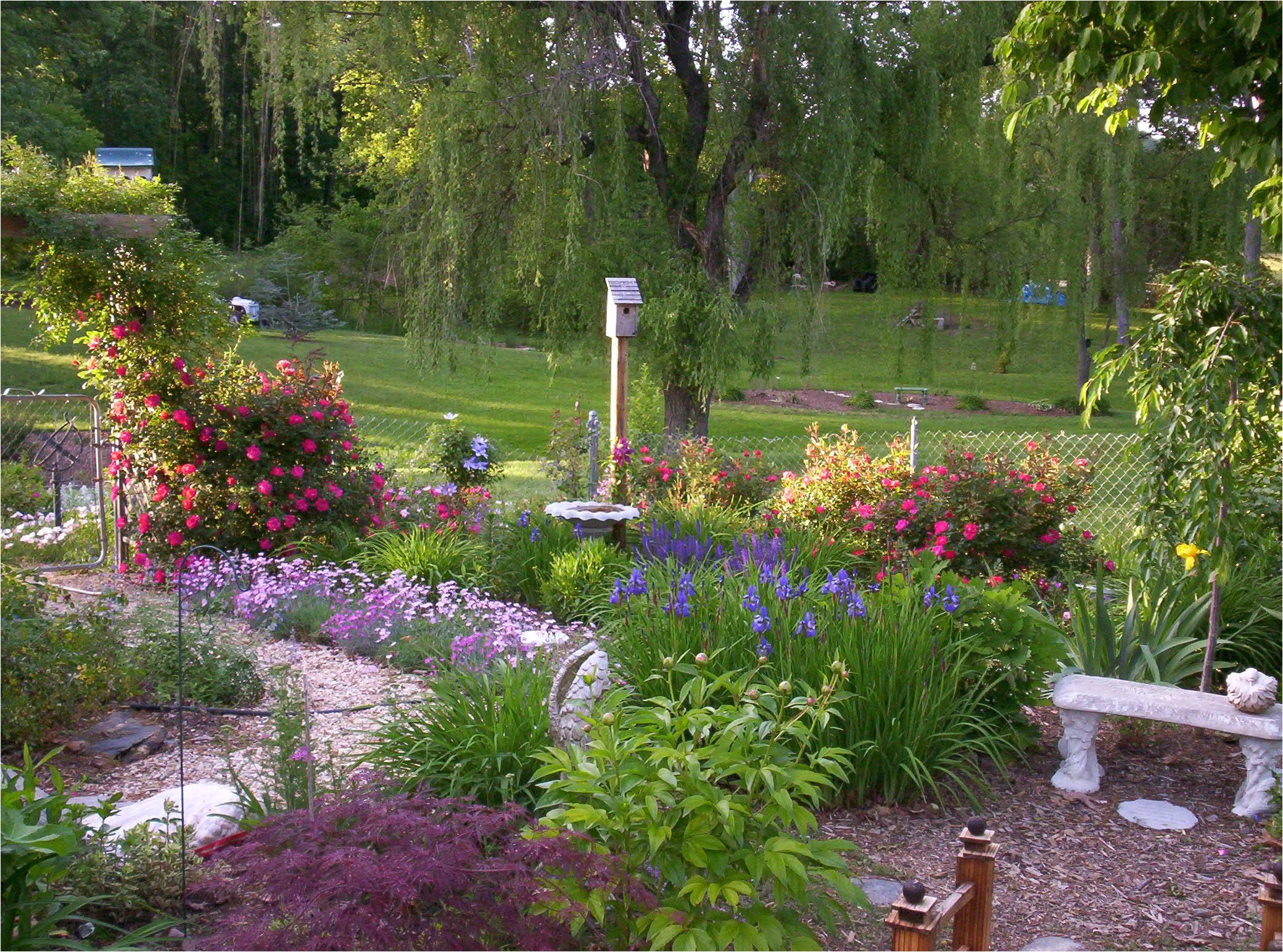 front yard landscaping ideas small area on budget a essential lawn care tips for your late summer home