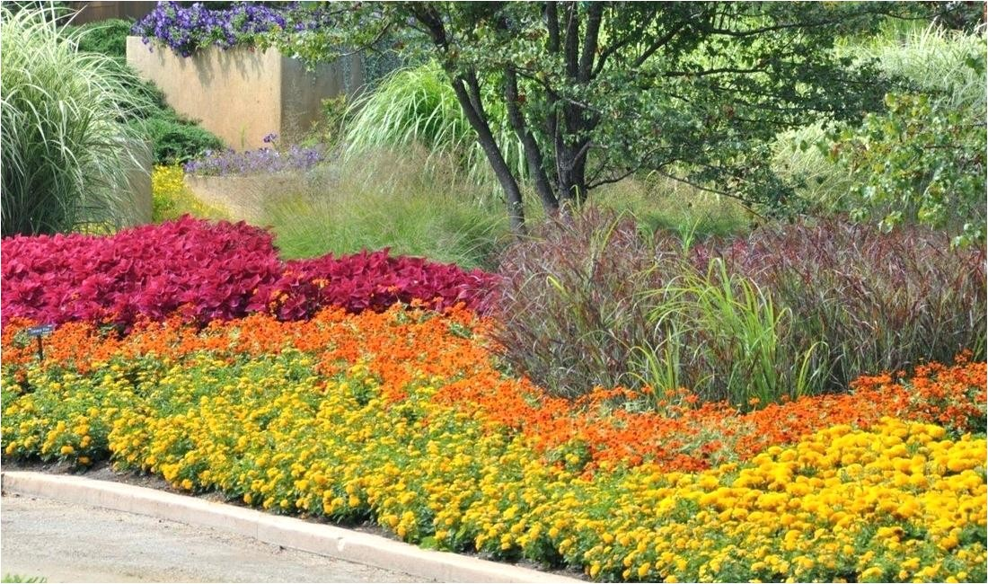 full sun perennial garden flower bed ideas for full sun pictures beautiful front of house and backyard free river rock photography for bed ideas cute garden and flowers on field full sun annual flower