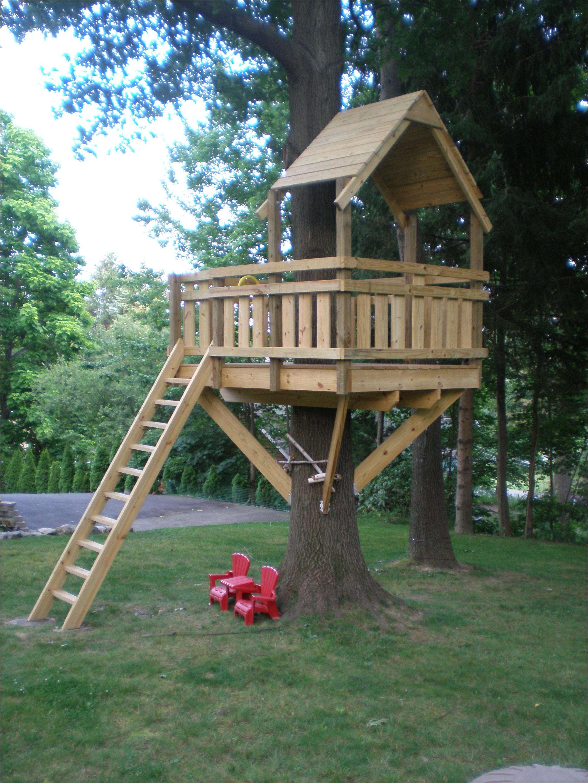 tree fort ladder gate roof finale