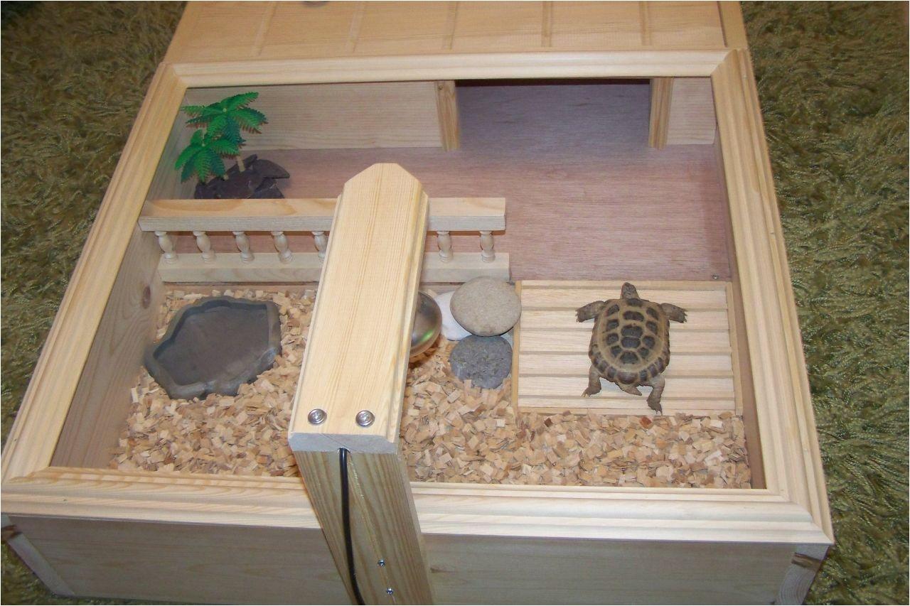 sulcata tortoise table