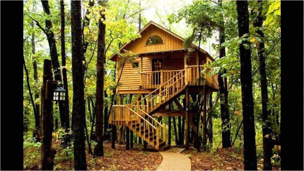 livable tree houses sale adults