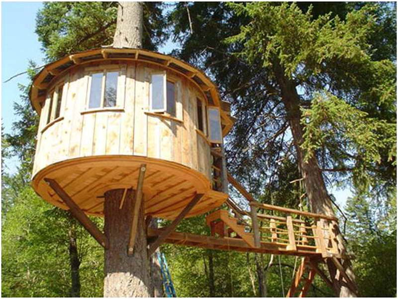 tree house designs and plans
