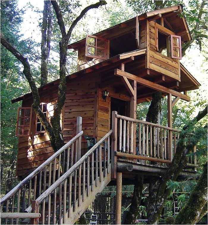 tree houses design breezepark sectional buildings