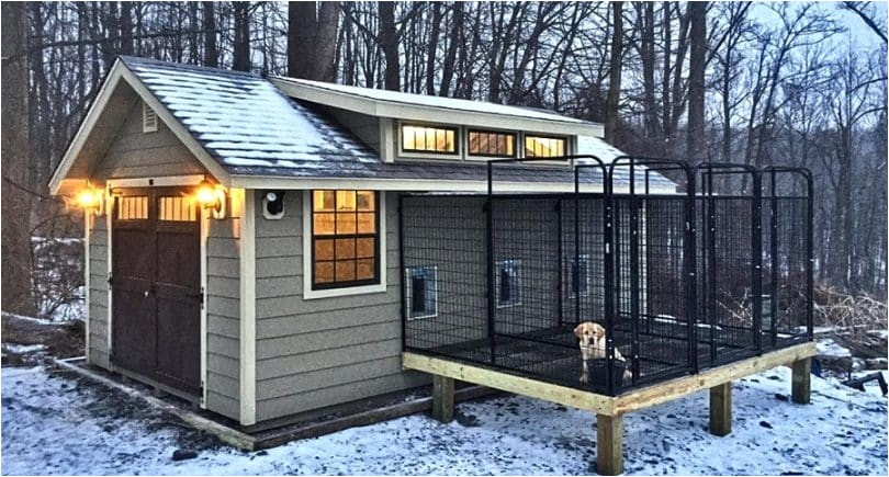 cold weather dog house