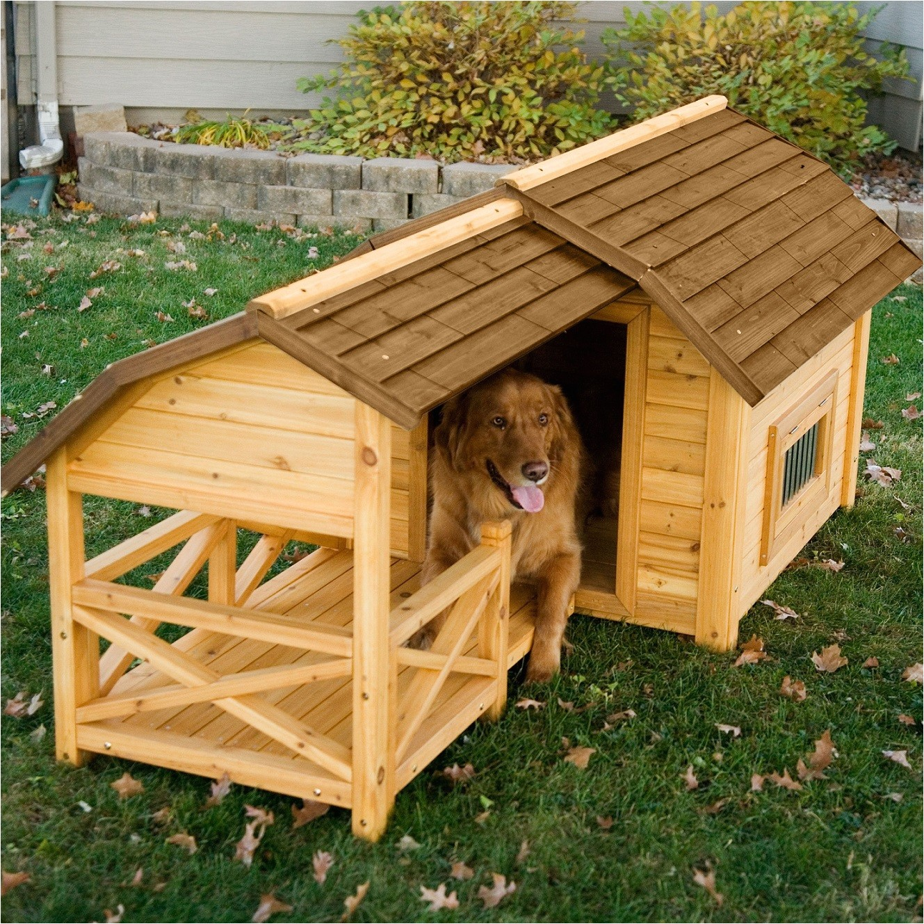 dog house designs with creative plans