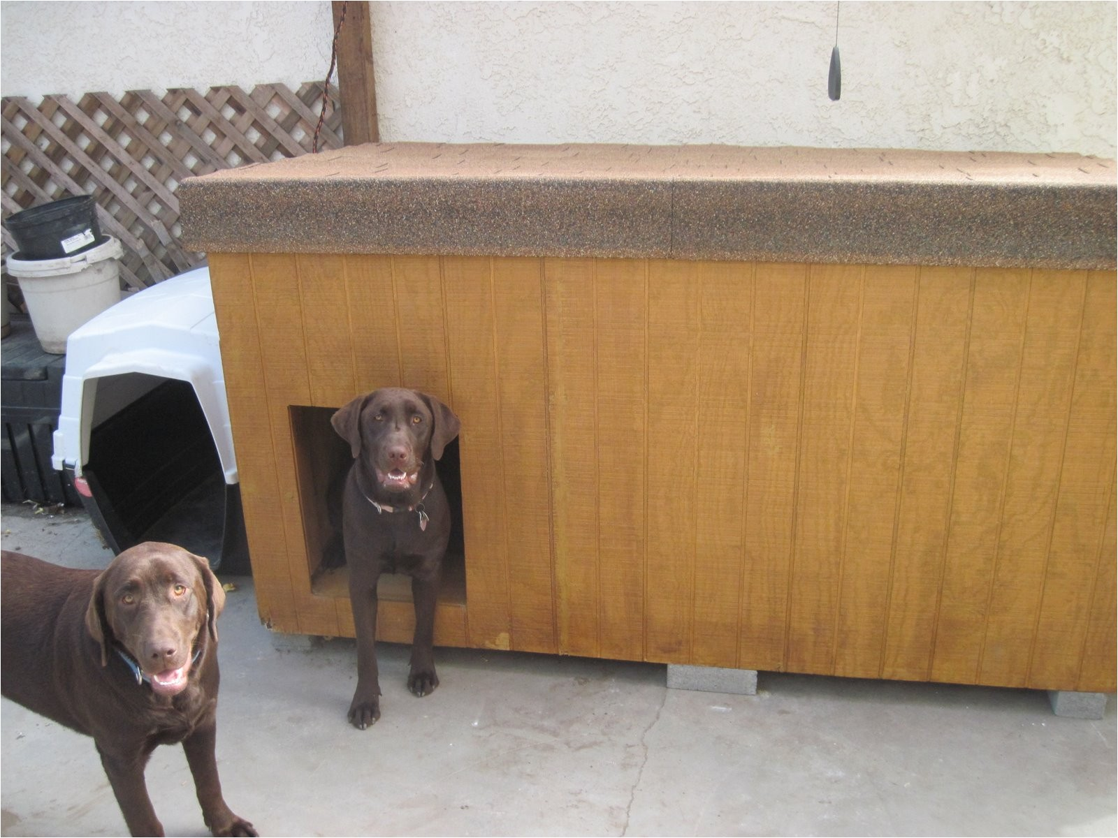 winter dog house plans