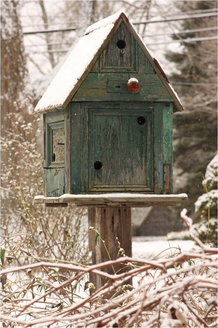 extra large bird feeder plans