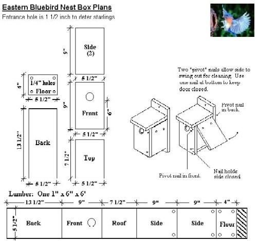 bluebird birdhouse plans
