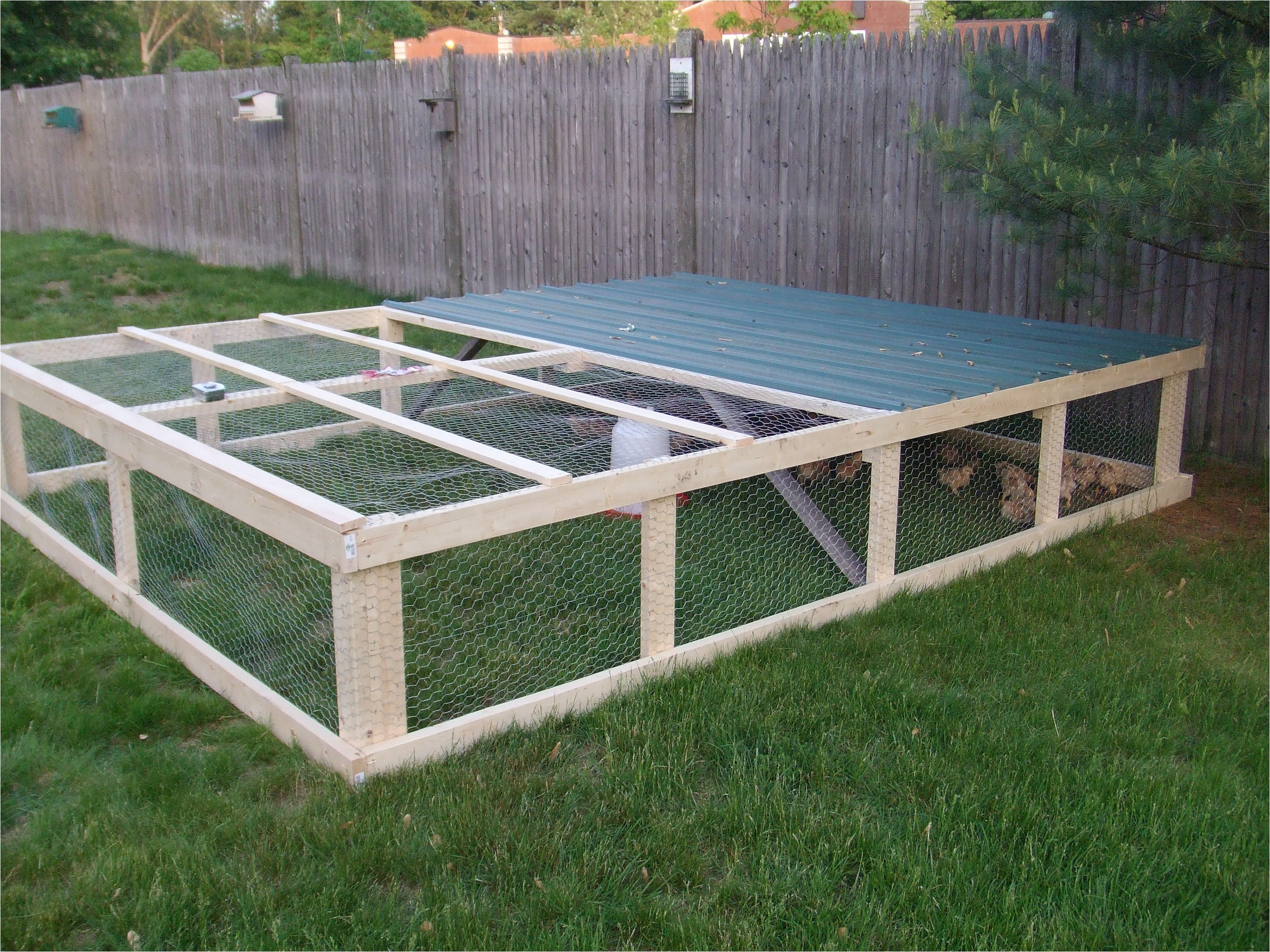chicken coop plans for 50 chickens