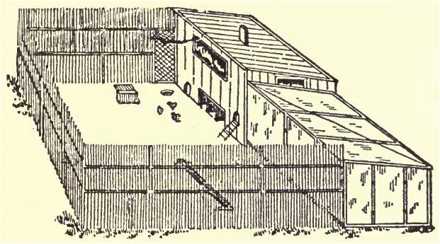 commercial chicken housing plans
