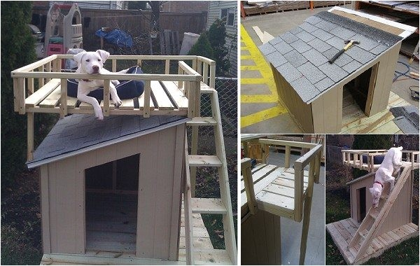 dog house plans home depot inspirational diy dog house with roof top deck