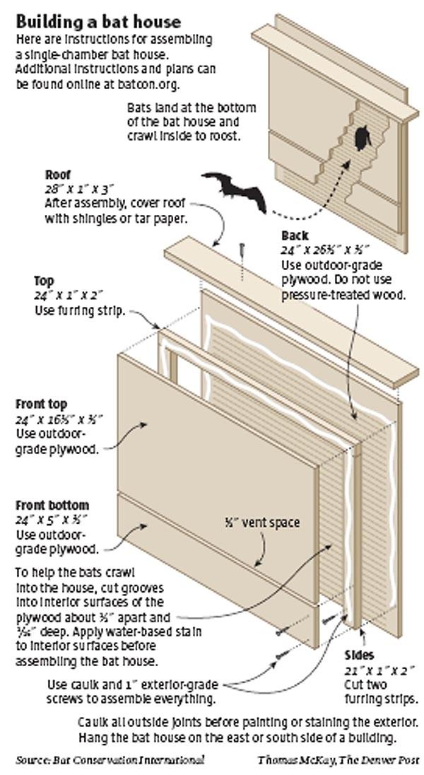 Easy Bat House Plans Bat Houses On Pinterest Bat House Plans Bats and Mosquitoes