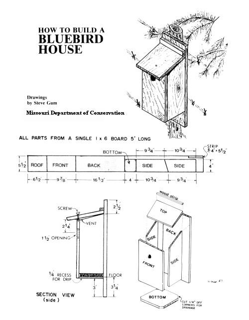 bird houses craigs post