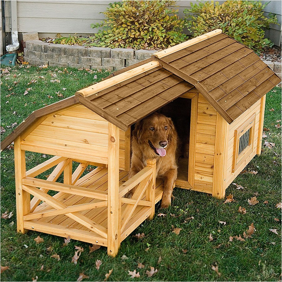 flat roof dog house plans lovely dog houses walmart