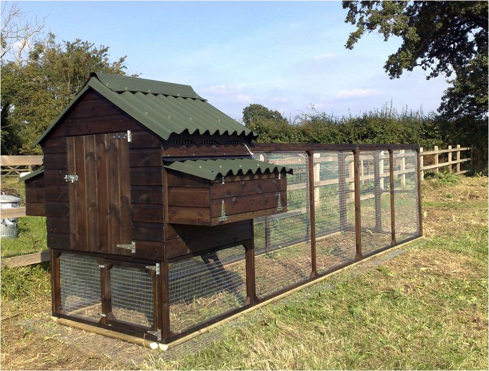 advantages of a large chicken coop