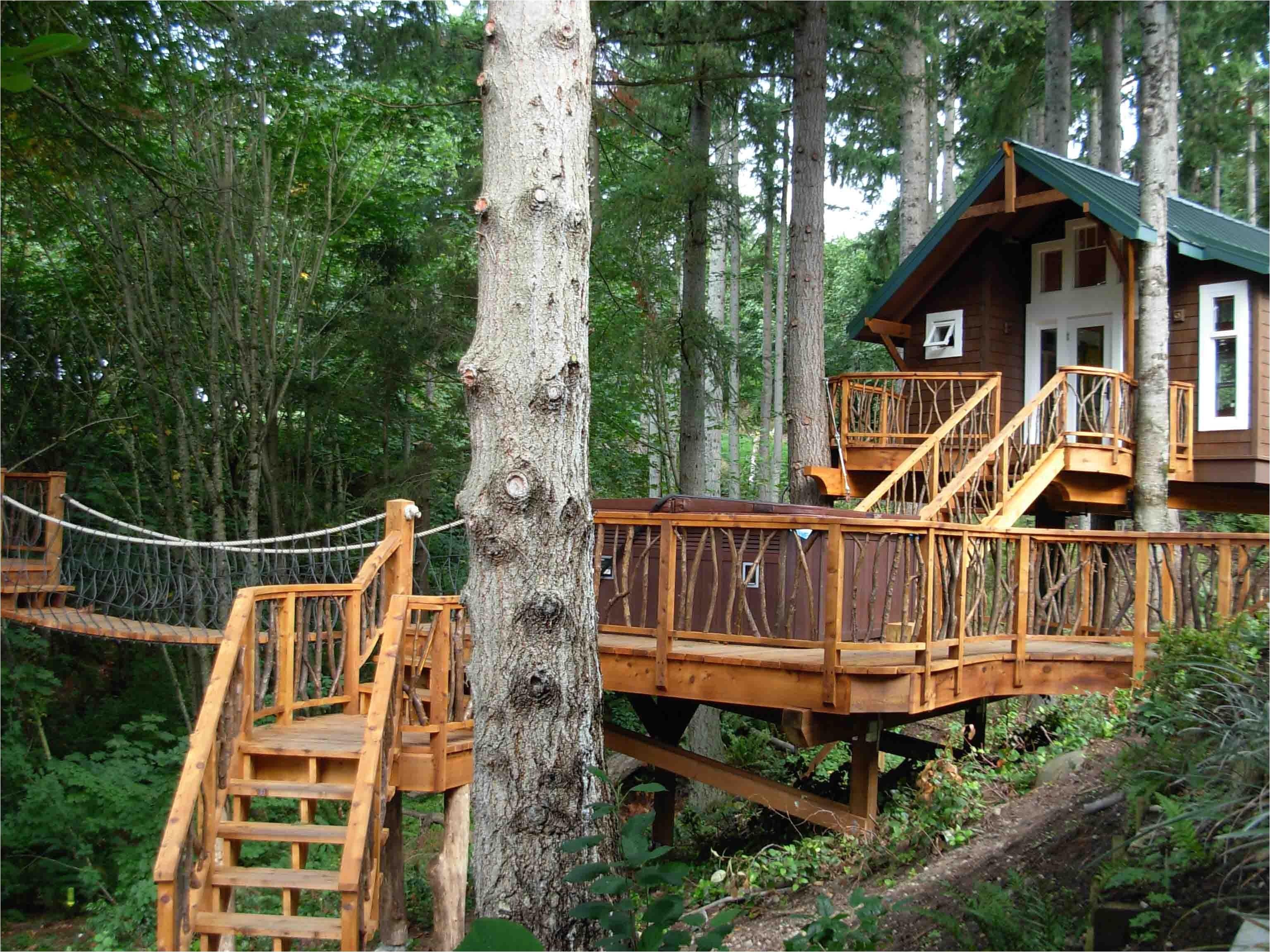 amazing tree house designs