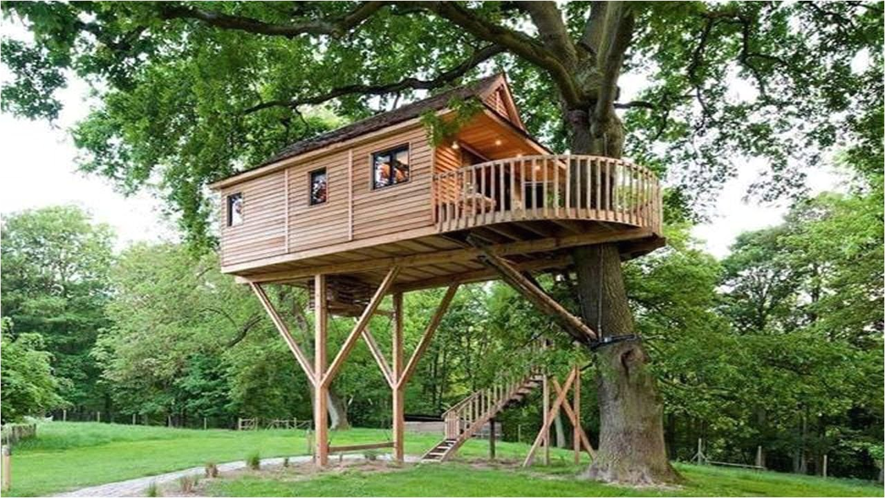 treehouse architecture top 16 tree house ideas that inspires you